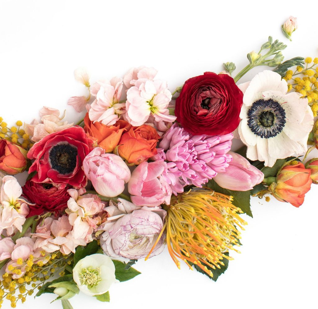 Trending filler blooms we love florists trending filler flowers we love florists izmirmasajfo