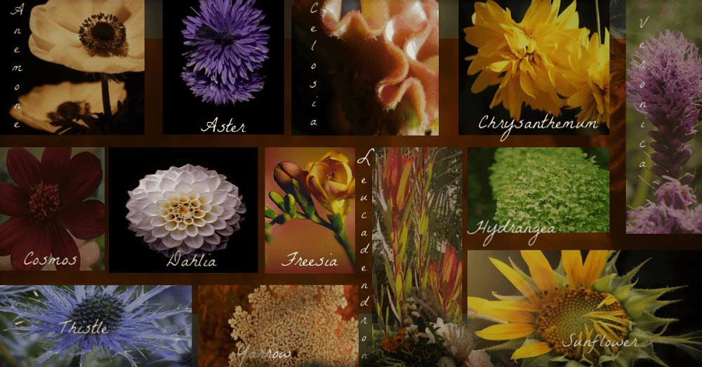 September Flower List